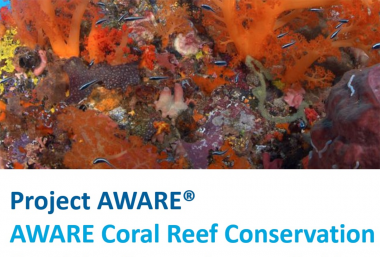 AWARE Coral Reef Conservation - VIRTUAL CLASS