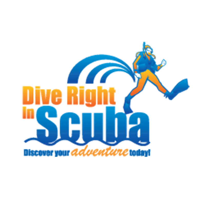 Slim Divers Wrench - Pair