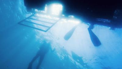 Boat Diver Course