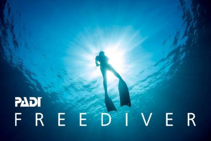 Freediver Basic Course