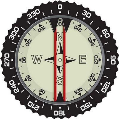 Compass Module (Pre-2006)