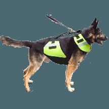 Flotation Dog Vest