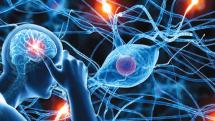 Neurological Assessment Provider Course - VIRTUAL CLASS
