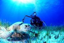 SDI Underwater Photographer Diver Course